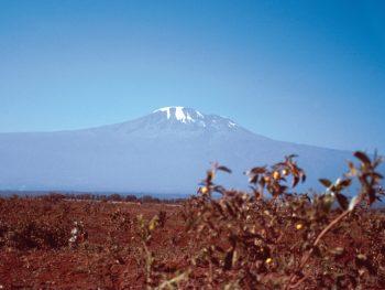 Der Kilimandscharo
