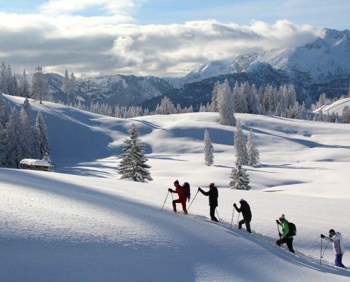 Schneeschuhwandern in Gosau