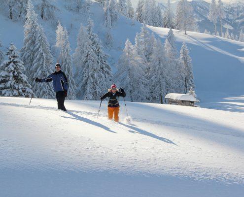 Schneeschuhwandern in Gosau Winter