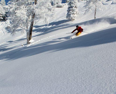 Skitechnik Meisterklasse